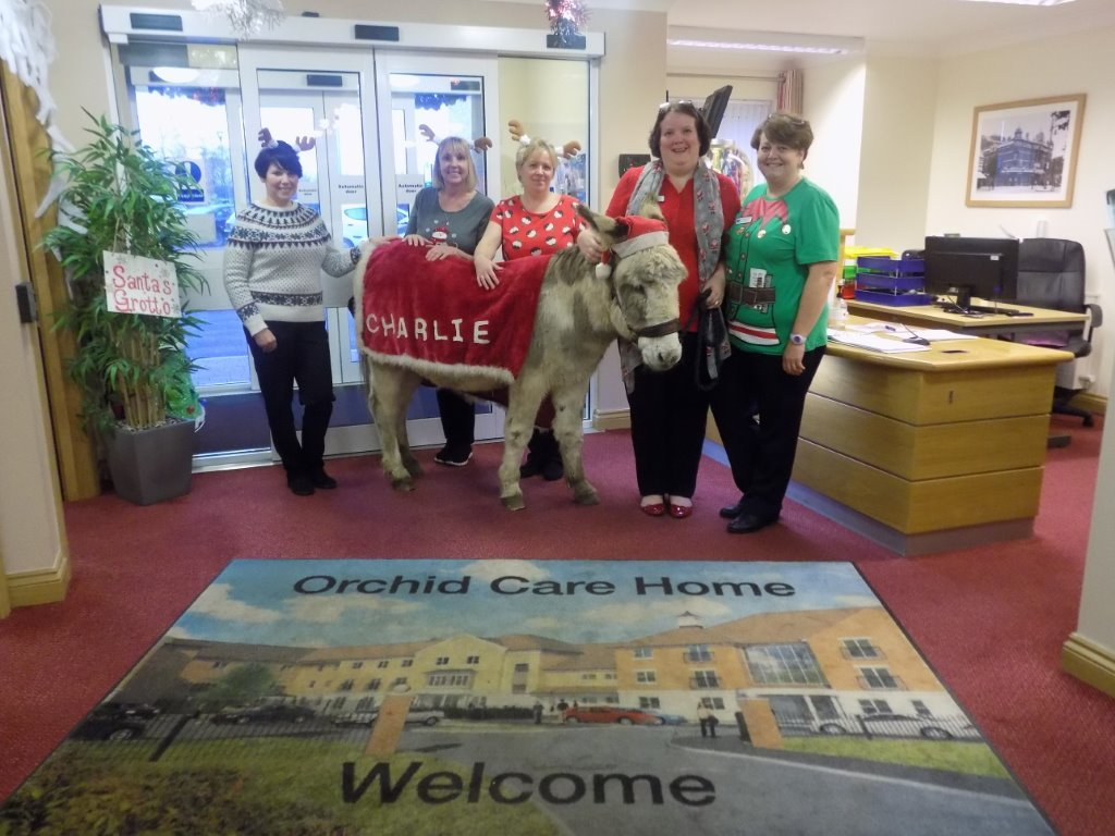 Charlie the Donkey comes to visit the Residents at Orchid Care Home