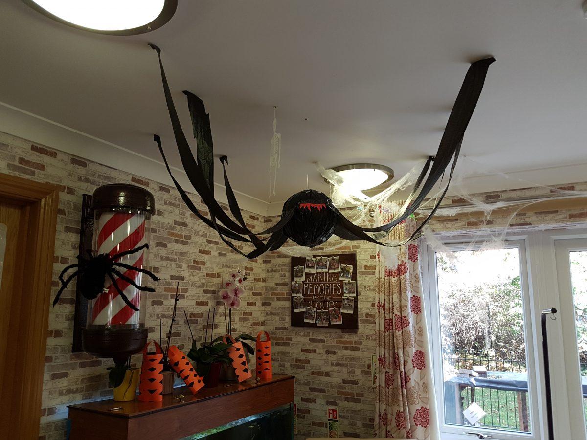 BEWARE SPIDER ALERT