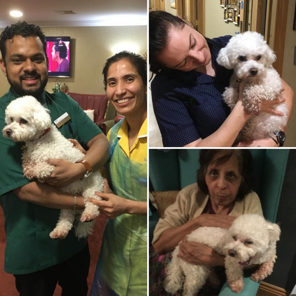 A little furry friend comes to visit residents and team members at Sairam Villa Care Home in Harrow